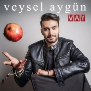 """VEYSEL AYGÜN'DEN BİR SEZEN AKSU KLASİĞİ """"VAY"""""""